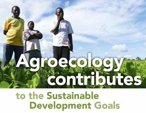 Agroecology contributes.jpg