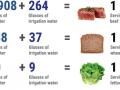 Gráfico sobre consumo de agua implícito en determinados alimentos