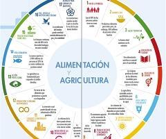 Gráfico agricultura y ODS