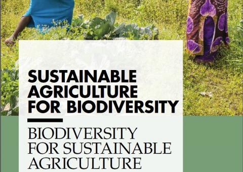 Detalle de la portada de un informe FAO sobre biodiversidad