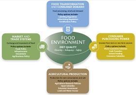 Gráfico sobre comportamientos nutricionales