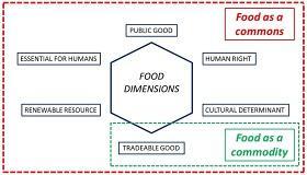 Gráfico de las diferentes dimensiones de la alimentación humana