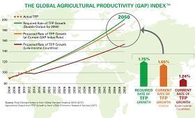 Gráfico del informe sobre el GAP de productividad agrícola