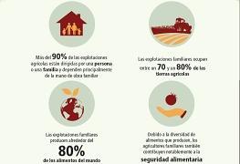 detalle de la infografía sobre agricultura familiar