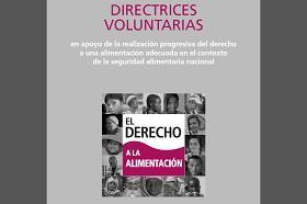 Potada de la publicación de las directrices voluntarias del derecho a la alimentación