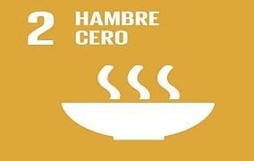 Logo del segundo objetivo de desarrollo sostenible, relacionado con el hambre cero