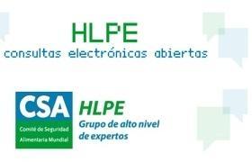 logotipo de las consultas electrónicas del Panel de Alto Nivel de Expertos del CSA