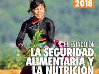 Detalle de la portada del informe SOFI 2018