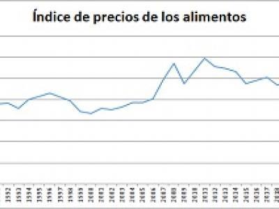 gráfico de evolución del precio de los alimentos
